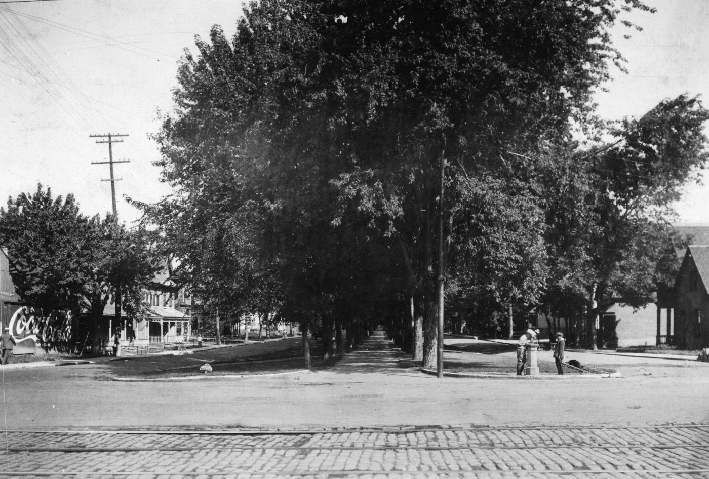 Black and white photograph of a two-lane avenue, with the central span covered with great elms. Houses border the street. Children drink from a fountain.